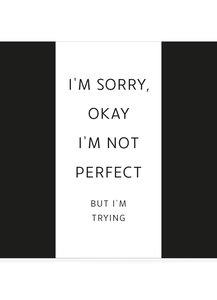 I'M SORRY •  CHOCOLADEWENS